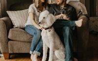 4 ทริคง่ายๆ อยู่บ้านกับน้องหมาแมวยังไงให้ค่าไฟไม่พุ่ง!