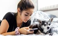 เจ้าของติดมือถือ เสี่ยงทำให้น้องหมามีปัญหาพฤติกรรม - ซึมเศร้า !!