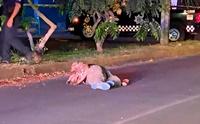 เจ้าตูบซื่อสัตย์นั่งเฝ้าเจ้าของถูกยิงกลางถนนที่ประเทศเม็กซิโก!