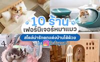 Review 10 ร้านเฟอร์นิเจอร์หมาแมว น่ารักตกแต่งบ้านได้จาก Instagram