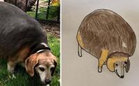 หนุ่มอ่อนศิลปะแต่มีใจอยากช่วยสัตว์ เปิดรับวาดภาพนำเงินไปบริจาค!