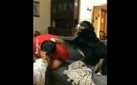 สนใจหนูหน่อย! คลิปเจ้าตูบงอแงเพราะเจ้าของสนใจสุนัขตัวอื่น