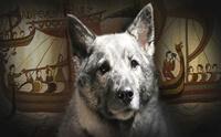 เรื่องเล่าจากอดีต EP2 ... ตำนานชาวนอร์สกับสุนัขในยุคแห่งนักรบไวกิ้ง