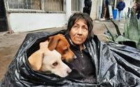 หญิงไร้บ้านใช้ชีวิตในถุงขยะกับ 6 สุนัข เหตุศูนย์พักพิงไม่ให้เลี้ยงสัตว์!