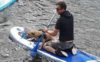 ฮีโร่ใจดี พายบอร์ดช่วยน้องหมาตกแม่น้ำ