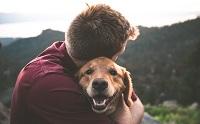 รอดตาย! น้องหมาปลุกเจ้าของรอดไฟไหม้ในมาเลเซีย