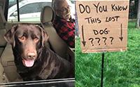 หนุ่มใจดียืนถือป้ายกระดาษตามหาเจ้าของสุนัขหลงทาง!