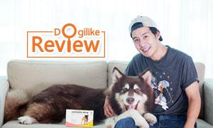 Review : �Ѵ��ûѭ�������Ѵ�ǹ㨹�ͧ���������鹷����