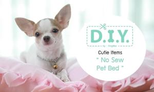 D.I.Y No Sew Pet Bed เบาะนอนน้องหมาทำง่ายไม่ต้องเย็บ