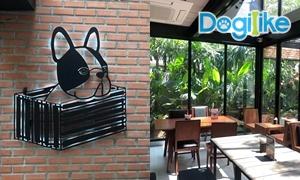 Dogilike Review : Bok Box Bkk ร้านธีมน้องหมาน่ารัก บรรยากาศดีสุด ๆ (ใกล้BTS)