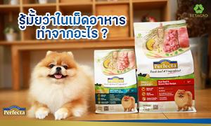 คุณรู้ไหมว่าในเม็ดอาหารสุนัขที่ให้น้องกินทุกวันทำจากอะไร?