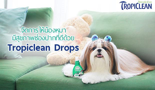 �Ѵ�������ͧ��� ���آ�Ҿ��ͧ�ҡ���մ��� Tropiclean Drops