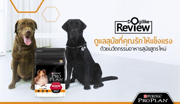 ดูแลสุนัขที่คุณรักให้แข็งแรง ด้วยนวัตกรรมอาหารสุนัขสูตรใหม่