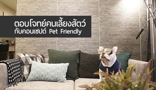 ตอบโจทย์คนเลี้ยงสัตว์ กับคอนเซปต์ Pet Friendly