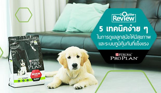 5 เทคนิคง่าย ๆ ในการดูแลลูกสุนัขให้มีสุขภาพและระบบภูมิคุ้มกันที่แข็งแรง