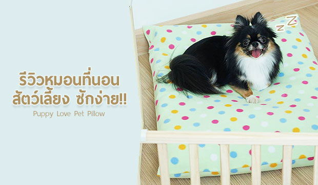 รีวิวหมอนที่นอนสัตว์เลี้ยงซักง่าย