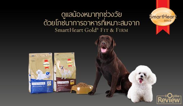 ดูแลน้องหมาทุกช่วงวัยด้วยโภชนาการอาหารที่เหมาะสมจาก SmartHeart GOLD® FIT & FIRM
