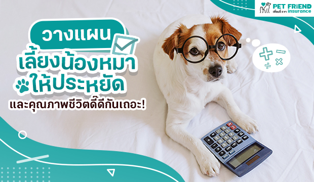เริ่มวางแผนเลี้ยงน้องหมาให้ประหยัดและคุณภาพชีวิตดี๊ดีกันเถอะ !